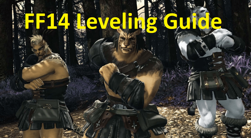 FF14 Leveling Guide